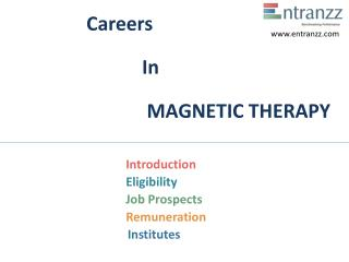 Careers In Magnetic therapy