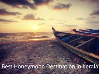 8 Amazing Destinations in Kerala for your Honeymoon