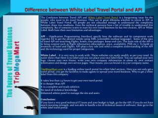 Difference between White Label Travel Portal and API