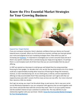 Know the Five Essential Market Strategies for Your Growing Business