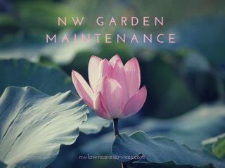 NW Garden Maintenance