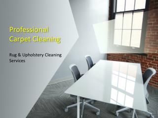 Professional Carpet Cleaning Company New York