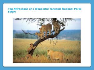 Top Attractions of a Wonderful Tanzania National Parks Safari