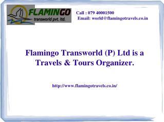 Best Dubai Tour Packages Servics   FlamingoTransworld