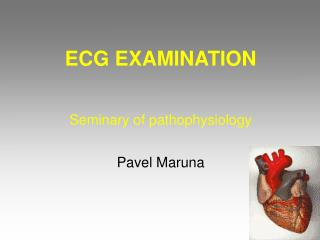ECG EXAMINATION  Seminary of pathophysiology  Pavel Maruna