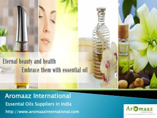 Natural Essential Oil Wholesale Suppliers in India