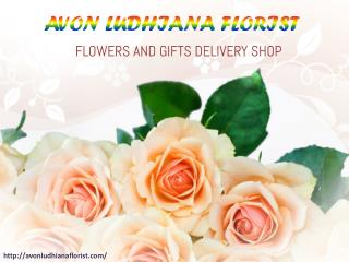 Ludhiana florist : Send Flowers to Ludhiana