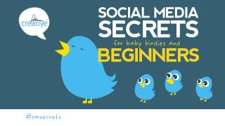 Social Media Secrets for Beginners
