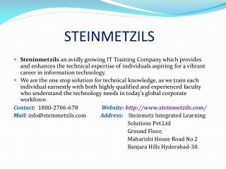 Steinmetzils| Best Software Online Training Institute in Hyderabad
