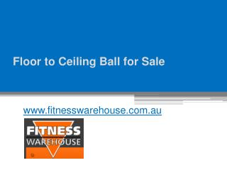 Floor to Ceiling Ball for Sale - www.fitnesswarehouse.com.au