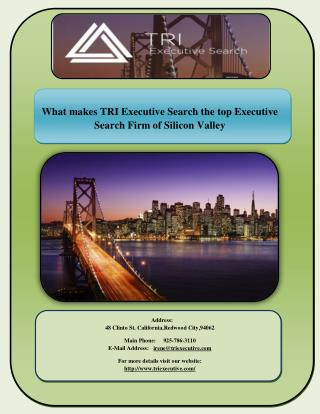 The qualities of TRI Executive Search