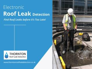 Find Roof Leaks Quickly and Easily - Electronic Roof Leak Detection!