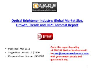 2016 Market Research Report on Global Optical Brightener Industry