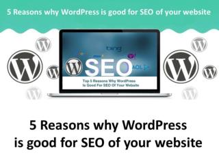5 Reasons why WordPress is good for SEO of your website