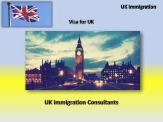 UK Immigration Consultant