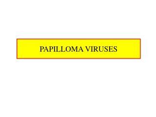 PAPILLOMA VIRUSES
