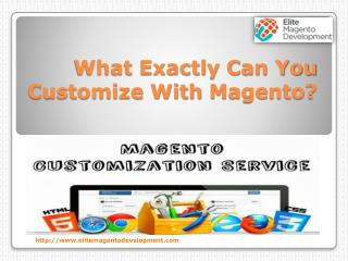 What Exactly Can You Customize With Magento?