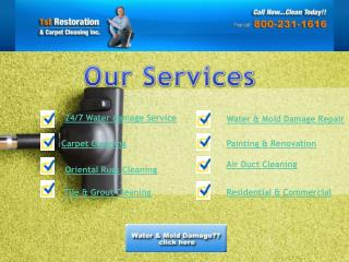 Professional mold removal services in Cooper city