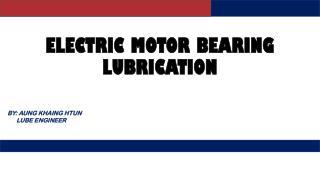 Electric Motor Bearing Lubrication