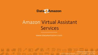 Dedicated Amazon Virtual Assistants