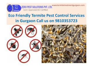 Eco Friendly Termite Pest Control Services in Gurgaon Call 9810353723