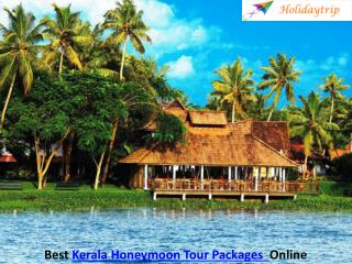 Book Kerala Tour Packages According to Your Budget