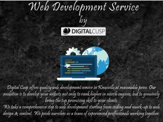 Web Development in Knoxville, TN by Digital Cusp
