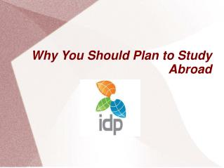 Why You Should Plan to Study Abroad