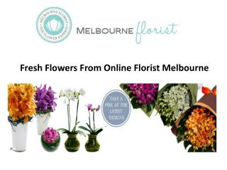 Fresh Flowers From Online Florist Melbourne