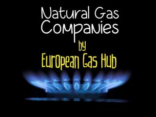 Natural Gas Companies by European Gas Hub
