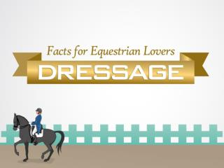 Facts for Equestrian Lovers: Dressage