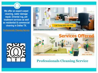 Professionals Cleaning Service