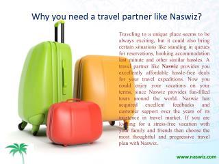 Naswiz Holidays Complaints and Reviews - Why you need a travel partner like Naswiz?