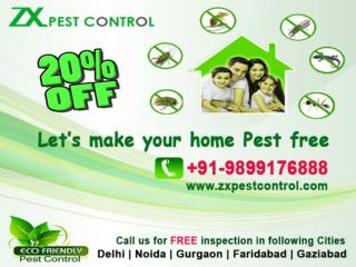 Flat 20% off on pest control services in Noida