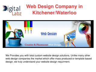Affordable Web Design & Development Services in Kitchener/Waterloo