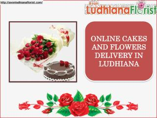 Cakes And Flowers Delivery In Ludhiana