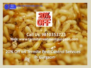 20% Off on Termite Pest Control Services in Gurgaon Call 9810353723