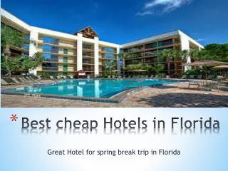 Best cheap hotels in Florida