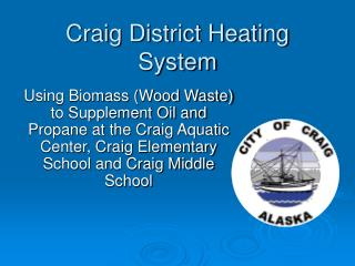 Craig District Heating System