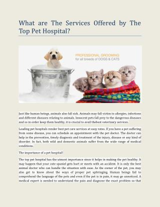 What are The Services Offered by The Top Pet Hospital?