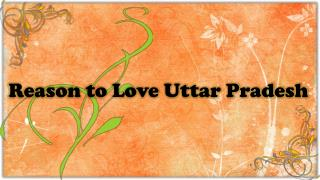 Reason to Love Uttar Pradesh