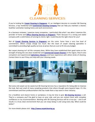 SB Cleaning Services