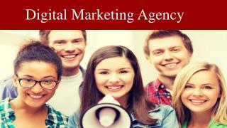 Marketing Agency Whangaparaoa