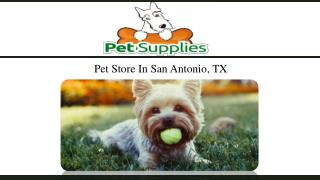 Pet Store In San Antonio, TX