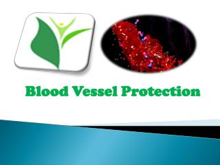 Blood Vessel Protection