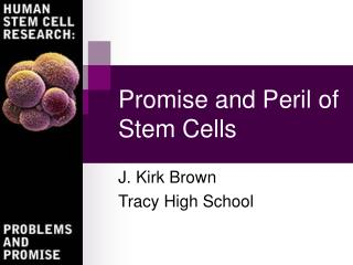 Promise and Peril of Stem Cells
