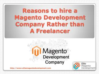 Reasons to hire a Magento Development Company Rather than A Freelancer
