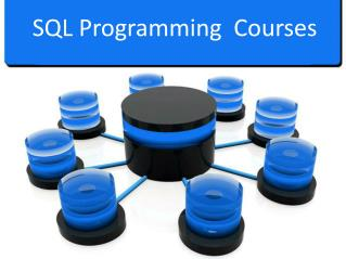 Premium SQL Programming Courses By Raising The Bar