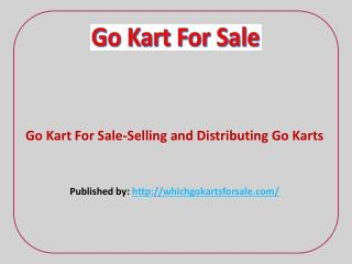 Go Kart For Sale-Selling and Distributing Go Karts