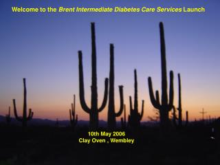 Welcome to the  Brent Intermediate Diabetes Care Services  Launch
